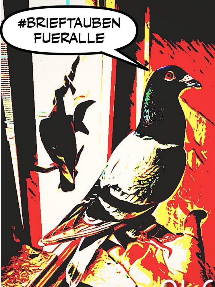 Comic-von-Cornelia-Appuhn